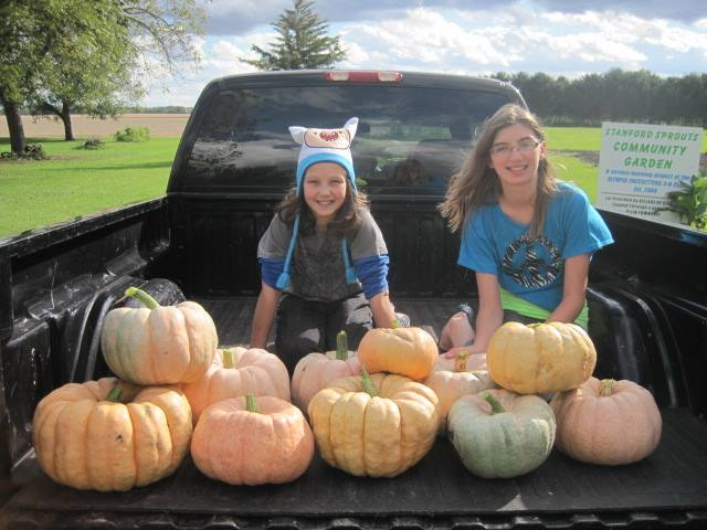 4-Hers planted pink pumpkins through the Pink Pumpkin Patch Foundation to benefit breast cancer research.